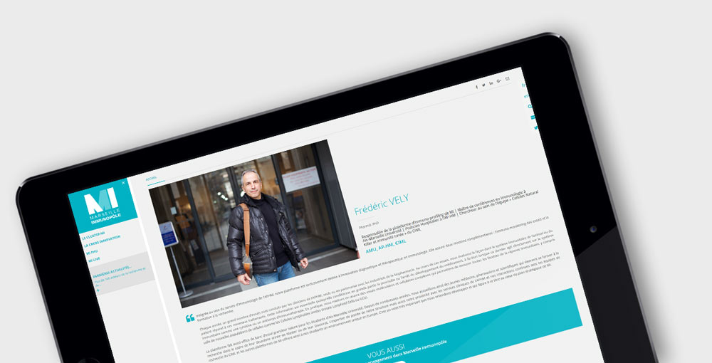 webdesign-mi-2